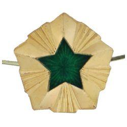 Звезда на погоны металл.ФССП, большая 20 мм, зол. с эмалью