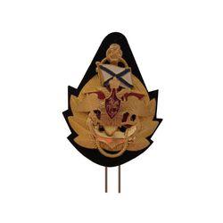 Кокарда ВМФ ДМБ с андр. флагом, зол.
